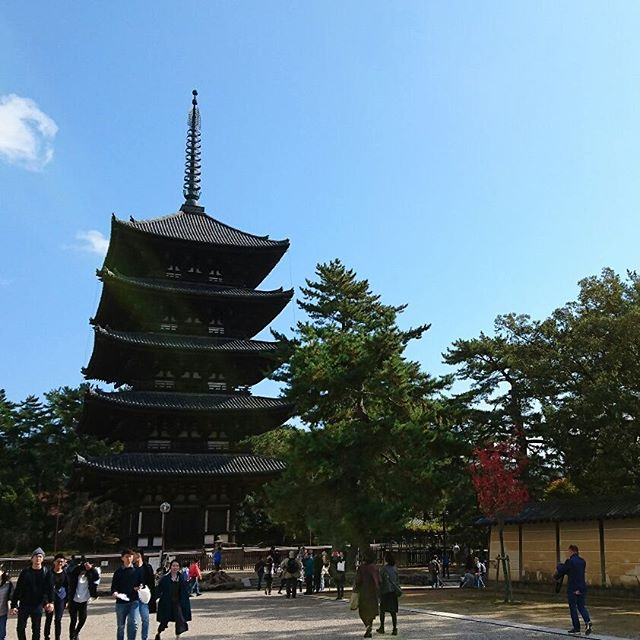 1300年前の聖武天皇の宝物を観に、奈良の正倉院展へ。お天気もよく奈良公園をたっぷり散策